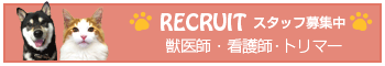 recruite_2